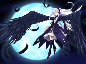 Rating: Safe Score: 20 Tags: doll rozen_maiden suigintou wings User: gnarf1975