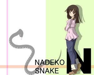 Rating: Safe Score: 19 Tags: animal bakemonogatari brown_eyes brown_hair monogatari_(series) sengoku_nadeko snake User: HawthorneKitty