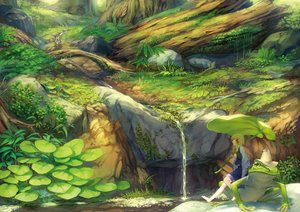 Rating: Safe Score: 59 Tags: animal barefoot benitama blonde_hair forest frog grass hat landscape leaves moriya_suwako scenic skirt touhou tree water waterfall User: FormX