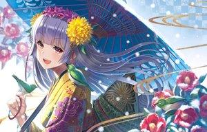 Rating: Safe Score: 33 Tags: animal bird flowers long_hair madopen original pink_eyes purple_hair snow umbrella User: RyuZU