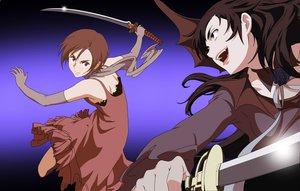 Rating: Questionable Score: 9 Tags: blood_(anime) diva otonashi_saya vector User: 秀悟
