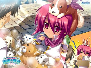 Rating: Safe Score: 12 Tags: animal bird blush dog koihime_musou red_hair ryofu tagme User: Oyashiro-sama