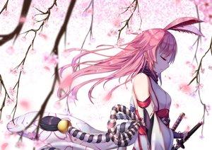 Rating: Safe Score: 131 Tags: animal_ears cherry_blossoms flowers honkai_impact japanese_clothes katana long_hair petals pink_hair sword weapon yae_sakura_(benghuai_xueyuan) ye_zi_you_bei_jiao_ju_ge User: RyuZU