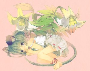 Rating: Safe Score: 10 Tags: animal_ears barefoot flowers green_hair mousegirl nazrin red_eyes ribbons short_hair tail tears touhou User: w7382001