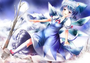 Rating: Safe Score: 39 Tags: animal_ears blue_hair bow catgirl cirno dress fairy jpeg_artifacts purple_eyes short_hair snow tail touhou tree umagenzin wings User: ガラス