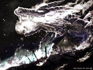 Rating: Safe Score: 138 Tags: brown_hair dragon dress kurohal long_hair night original pixiv_fantasia snow spear sword weapon User: FormX