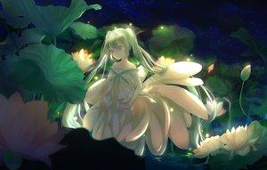 Rating: Safe Score: 45 Tags: clouds dark flowers green_eyes green_hair hatsune_miku jpeg_artifacts long_hair night qi_he_ye sky stars twintails vocaloid water User: BattlequeenYume