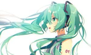 Rating: Safe Score: 23 Tags: green_eyes green_hair hatsune_miku long_hair mamyouda signed twintails vocaloid User: sadodere-chan