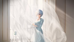 Rating: Safe Score: 22 Tags: blue_eyes blue_hair dress flowers rem_(re:zero) re:zero_kara_hajimeru_isekai_seikatsu short_hair sowb User: Dreista