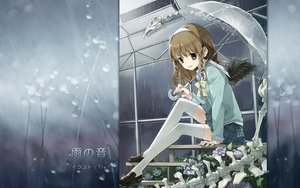 Rating: Safe Score: 133 Tags: bones braids flowers rain seifuku short_hair thighhighs tiv umbrella wings User: mazaku