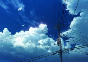 Rating: Safe Score: 52 Tags: animal bird clouds mocha_(cotton) original signed sky User: RyuZU