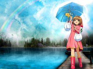 Rating: Safe Score: 15 Tags: card_captor_sakura kero kinomoto_sakura rain umbrella water User: Oyashiro-sama