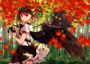 Rating: Safe Score: 69 Tags: autumn camera forest kisaragi_yuri leaves shameimaru_aya touhou tree wings User: BattlequeenYume