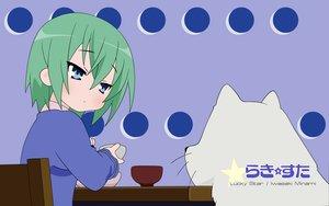 Rating: Safe Score: 6 Tags: iwasaki_minami lucky_star User: 秀悟