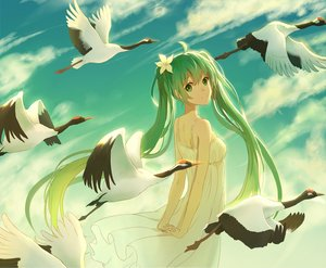 Rating: Safe Score: 133 Tags: animal bird clouds green_eyes green_hair hatsune_miku lan_jue long_hair sky summer_dress twintails vocaloid User: humanpinka