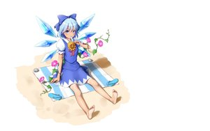 Rating: Safe Score: 21 Tags: barefoot blue_eyes blue_hair bow cirno dress dtvisu fairy flowers popsicle short_hair third-party_edit touhou white wings User: RyuZU