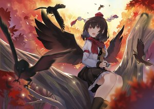 Rating: Safe Score: 17 Tags: animal autumn bird black_hair brown_eyes camera hat kneehighs leaves rin_falcon scarf shameimaru_aya skirt touhou tree wings User: BattlequeenYume