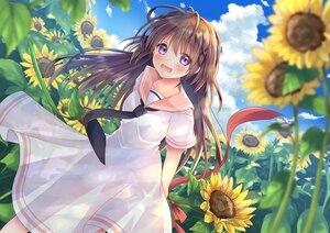 Rating: Safe Score: 50 Tags: blush brown_hair clouds dress flowers long_hair original purple_eyes ribbons school_uniform sky sunflower yorarry User: BattlequeenYume
