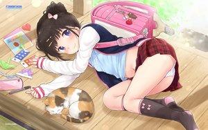Rating: Questionable Score: 235 Tags: animal black_hair blush cat game-style kneehighs logo loli navel panties paper purple_eyes skirt underwear watermark yukiu_con User: gnarf1975