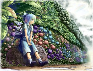 Rating: Safe Score: 50 Tags: aratama blue_eyes blue_hair cirno flowers leaves short_hair touhou User: opai