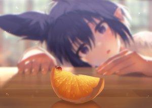 Rating: Safe Score: 110 Tags: animal animal_ears blue_hair close food fruit mano_(narumi_arata) narumi_arata orange_(fruit) original pointed_ears purple_eyes short_hair User: BattlequeenYume