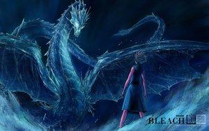 Rating: Safe Score: 119 Tags: all_male bleach blue dragon gray_hair hitsugaya_toushirou jpeg_artifacts male short_hair waterist watermark User: Tensa