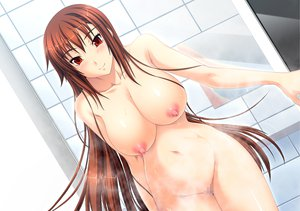 Rating: Explicit Score: 102 Tags: breasts brown_hair censored dekakute_ecchi_na_ore_no_ane game_cg long_hair nipples nude wet User: Wiresetc