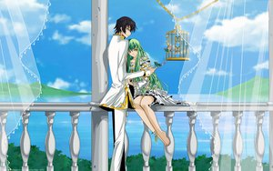 Rating: Safe Score: 53 Tags: black_hair cc clouds code_geass dress green_hair lelouch_lamperouge long_hair male purple_eyes short_hair sky vector yellow_eyes User: pantu