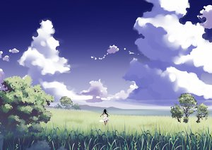 Rating: Safe Score: 52 Tags: black_hair clouds dress grass landscape long_hair original scenic sky tensugi_takashi tree User: STORM