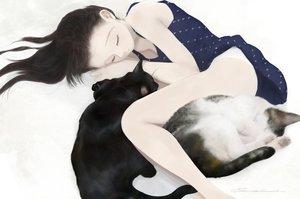 Rating: Safe Score: 32 Tags: animal black_hair cat dress junito715 long_hair original panties signed underwear User: RyuZU
