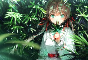 Rating: Safe Score: 134 Tags: brown_hair dress dsmile green green_eyes leaves long_hair original ribbons scan twintails User: Nepcoheart