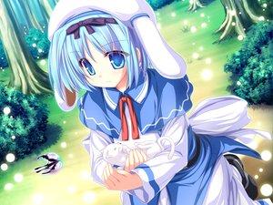 Rating: Safe Score: 17 Tags: animal blue_eyes blue_hair bow cat game_cg hat kujou_yuuka magus_tale tenmaso tree whirlpool User: Oyashiro-sama