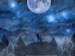 Rating: Safe Score: 71 Tags: animal moon sky space stars tree wolf wolfs_rain User: Maboroshi