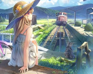 Rating: Safe Score: 110 Tags: animal bicycle blonde_hair cat clouds cropped dress flowers grass hat landscape long_hair original purple_eyes scenic sky summer_dress train waifu2x wingheart User: RyuZU