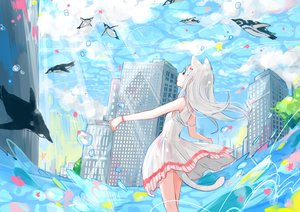 Rating: Safe Score: 44 Tags: animal animal_ears bubbles building catgirl city clouds dress gray_hair long_hair original penguin sky summer_dress tail water yutukicom User: RyuZU