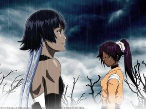 Rating: Safe Score: 22 Tags: 2girls bleach dark_skin rain shihouin_yoruichi soifon water User: Oyashiro-sama