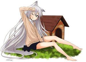 Rating: Safe Score: 153 Tags: abe_kanari animal_ears barefoot doggirl gray_hair long_hair original wink User: Wiresetc