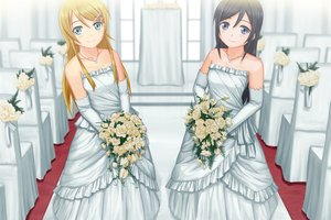 Rating: Safe Score: 115 Tags: 2girls aragaki_ayase black_hair blonde_hair blue_eyes elbow_gloves flowers gloves kousaka_kirino necklace ore_no_imouto_ga_konna_ni_kawaii_wake_ga_nai robintheart wedding_attire User: FormX