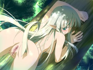 Rating: Explicit Score: 69 Tags: blush censored green_eyes green_hair nipples nude pointed_ears pussy pussy_juice tree wiz_anniversary User: Oyashiro-sama