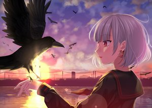 Rating: Safe Score: 27 Tags: animal bird close original red_eyes shaketarako short_hair sunset white_hair User: mattiasc02