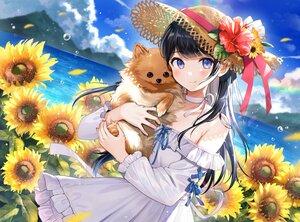 Rating: Safe Score: 80 Tags: animal black_hair blush choker clouds dog dress flowers hat nishizawa original purple_eyes sky sunflower User: BattlequeenYume