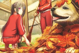 Rating: Safe Score: 37 Tags: 2girls abo_(kawatasyunnnosukesabu) animal autumn brown_hair building dog gym_uniform leaves long_hair original ponytail red_eyes User: luckyluna