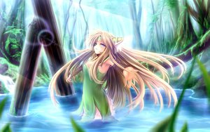 Rating: Safe Score: 105 Tags: blonde_hair blue_eyes gizensha long_hair riesz seiken_densetsu seiken_densetsu_3 water User: austerely