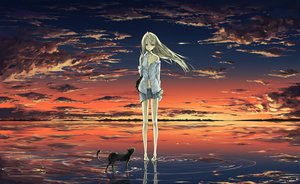 Rating: Safe Score: 245 Tags: animal cat clouds original sky tyappygain water User: opai