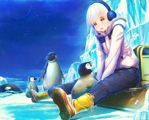 Rating: Safe Score: 58 Tags: abo_(kawatasyunnnosukesabu) animal boots earmuffs original penguin red_eyes short_hair tears white_hair User: RyuZU