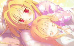 Rating: Safe Score: 22 Tags: bed blonde_hair blush game_cg irotoridori_no_hikari irotoridori_no_sekai long_hair nikaidou_shinku red_eyes shida_kazuhiro sleeping User: Maboroshi