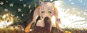 Rating: Safe Score: 79 Tags: animal_ears catgirl cheli_(kso1564) dan_gyuri flowers grass green_eyes long_hair twintails white_hair User: BattlequeenYume