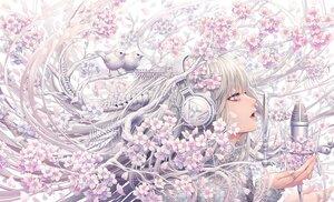 Rating: Safe Score: 62 Tags: animal bird bones cherry_blossoms close flowers gray_hair headphones long_hair microphone minami_(minami373916) original petals purple_eyes spring User: otaku_emmy