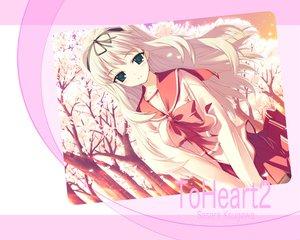 Rating: Safe Score: 5 Tags: aquaplus kawata_hisashi kusugawa_sasara leaf to_heart to_heart_2 User: Oyashiro-sama