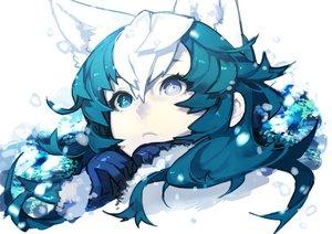 Rating: Safe Score: 125 Tags: animal_ears bicolored_eyes blue_eyes blue_hair close hujimogeo original snow white_hair User: FormX